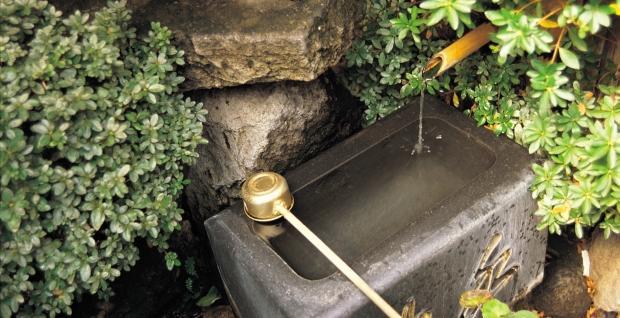 Źródełko w ogrodzie japońskim