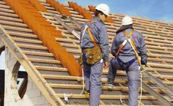 Budujemy dach ekologiczny