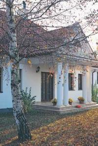 Dom z kolumnami