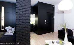 Czarna ściana w pokoju. Jak zastosować czarny kolor we wnętrzach? Zdjęcia