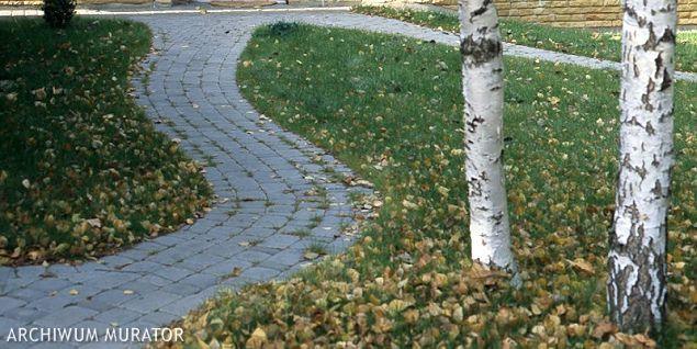 Jesień w ogrodzie. Jak przygotować trawnikdo zimy