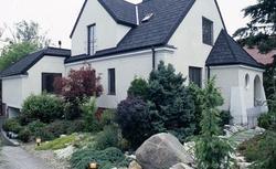 Skalniak. Jak zbudować ogród skalny w ogrodzie