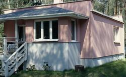 Kupno domu wieloletniego - sprawdź piwnicę, komin, dach.