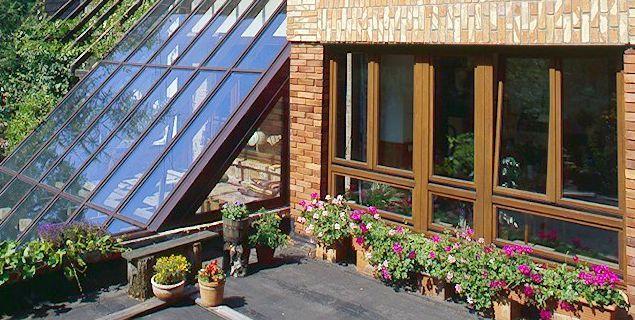 Kwiaty doniczkowe na balkonie lub tarasie