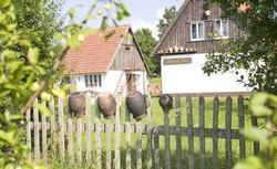Ważne definicje, gdy kupujesz działkę rolną: gospodarstwo rolne, rolnik, nieruchomość rolna